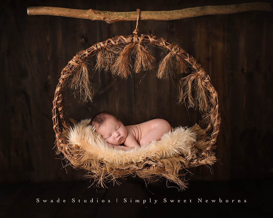 Kansas city newborn photographer swade studios sweet newborn boy in rustic hanging basket